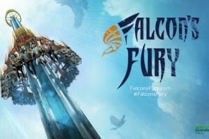 Busch Gardens Tampa Preparing For Falcon's Fury Opening Date