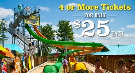 silver dollar city offer