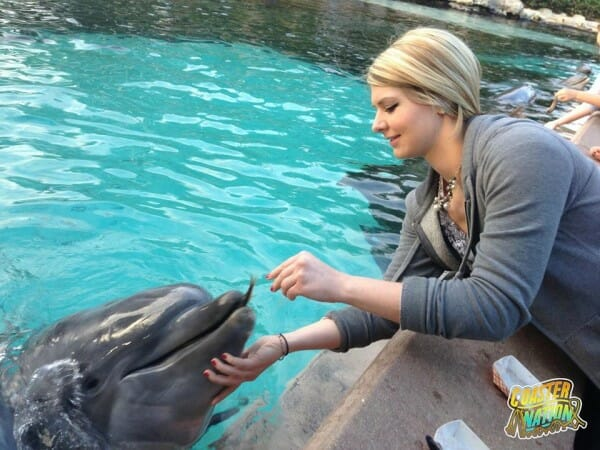 alyssa schipani at seaworld dolphin cove