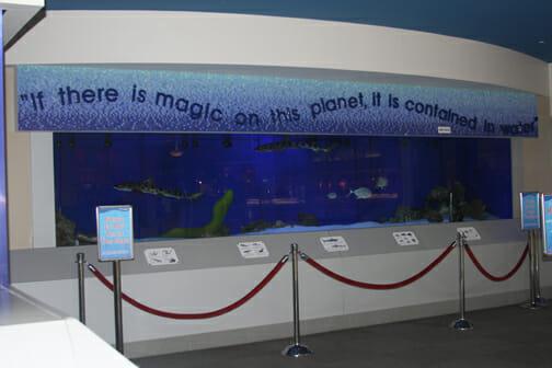 eastwood mall aquarium