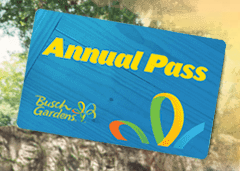2016 is a big year for busch gardens tampa coaster nation Busch gardens pass member benefits