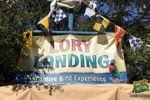 Lory Landing Rehab At Busch Gardens Tampa