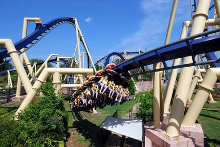 2016 is a big year for busch gardens tampa coaster nation for Best day go busch gardens tampa