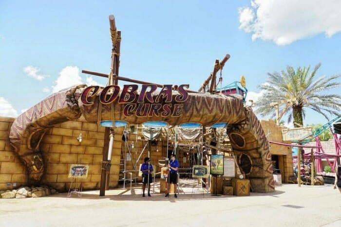 cobras curse entrance