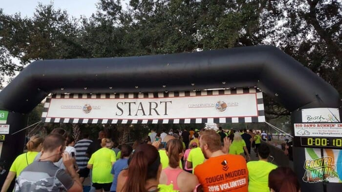 run for the fund 2017 11