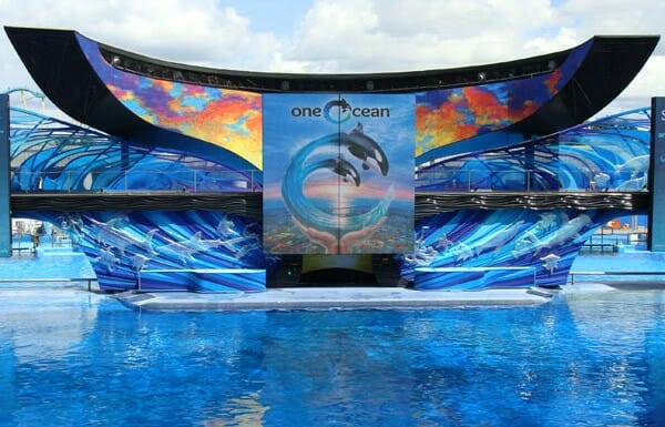 SeaWorld Orlando Offers Sneak Peek of its Future Before One Ocean Show