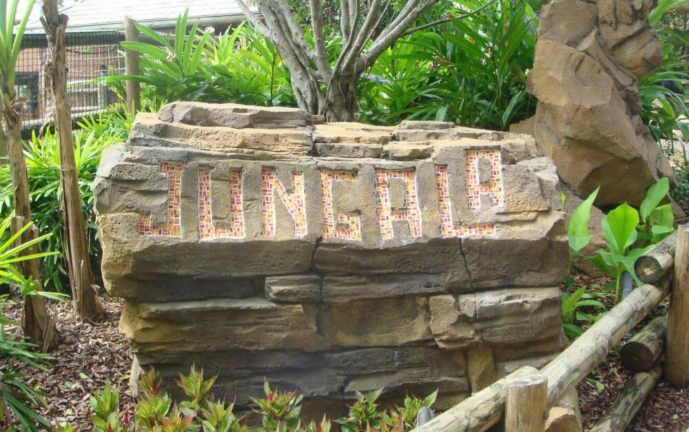 Busch Gardens Tampa Closes Jungala