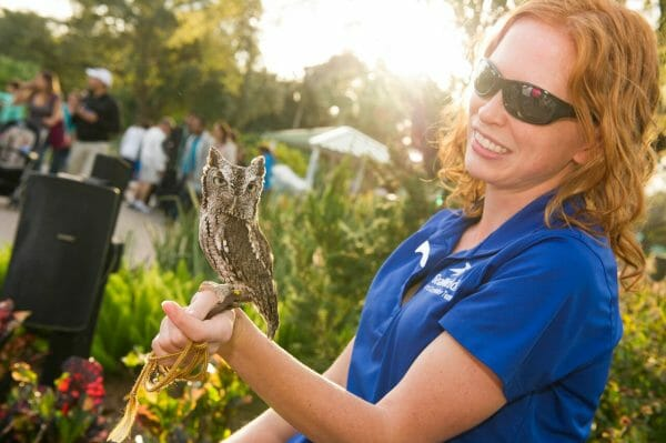 SeaWorld Orlando Offering Two Special Events In May