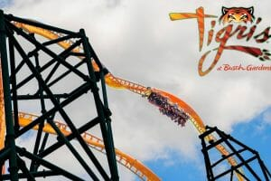 "Busch Gardens Tampa Announces New Multi-Launch Thrill Coaster ""Tigris"""