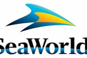 SeaWorld Orlando Announces New Roller Coaster For 2016