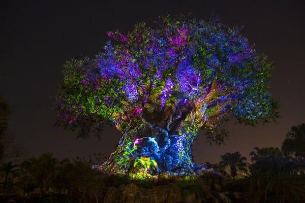 Disney's Animal Kingdom: New Show Revealed by Walt Disney World